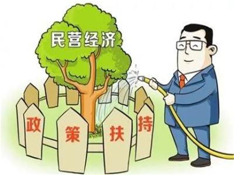 重磅!潍坊出台财税政策实施细则,支持民营经济高质量发展!